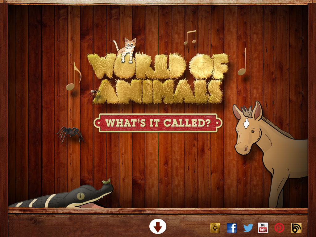world of animals whats it called animal sounds animal facts
